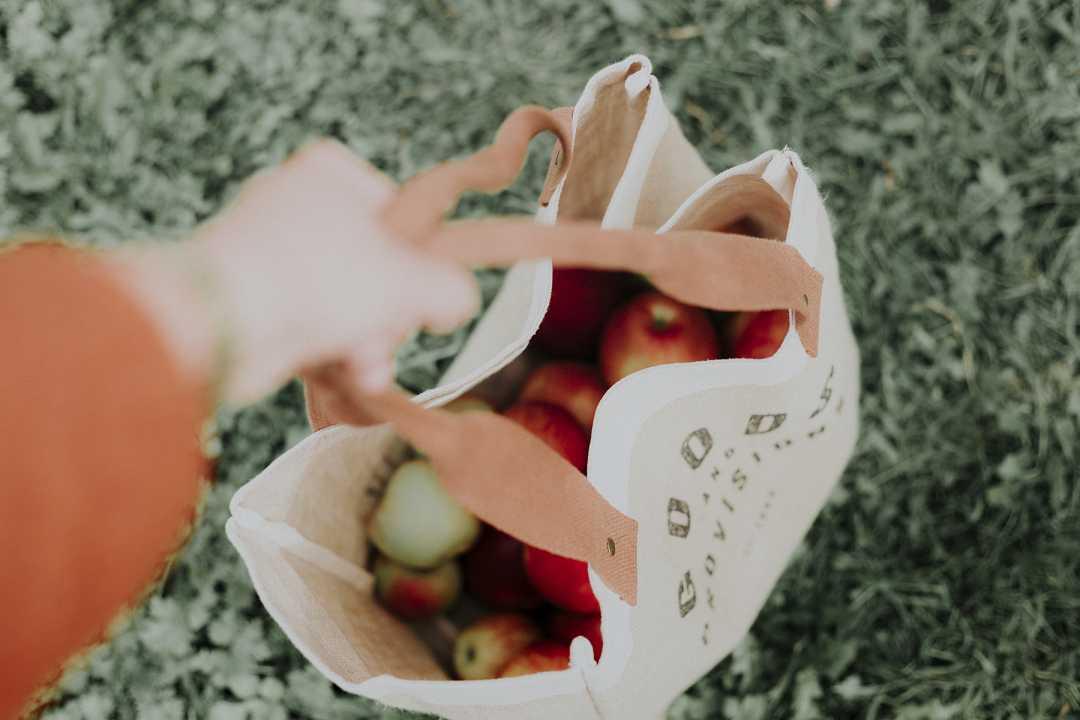 kit ecologico alternative alla plastica monousi