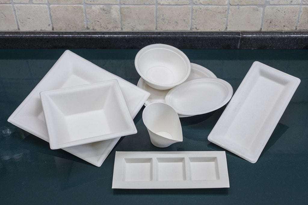 piatti compostabili ecobioshopping
