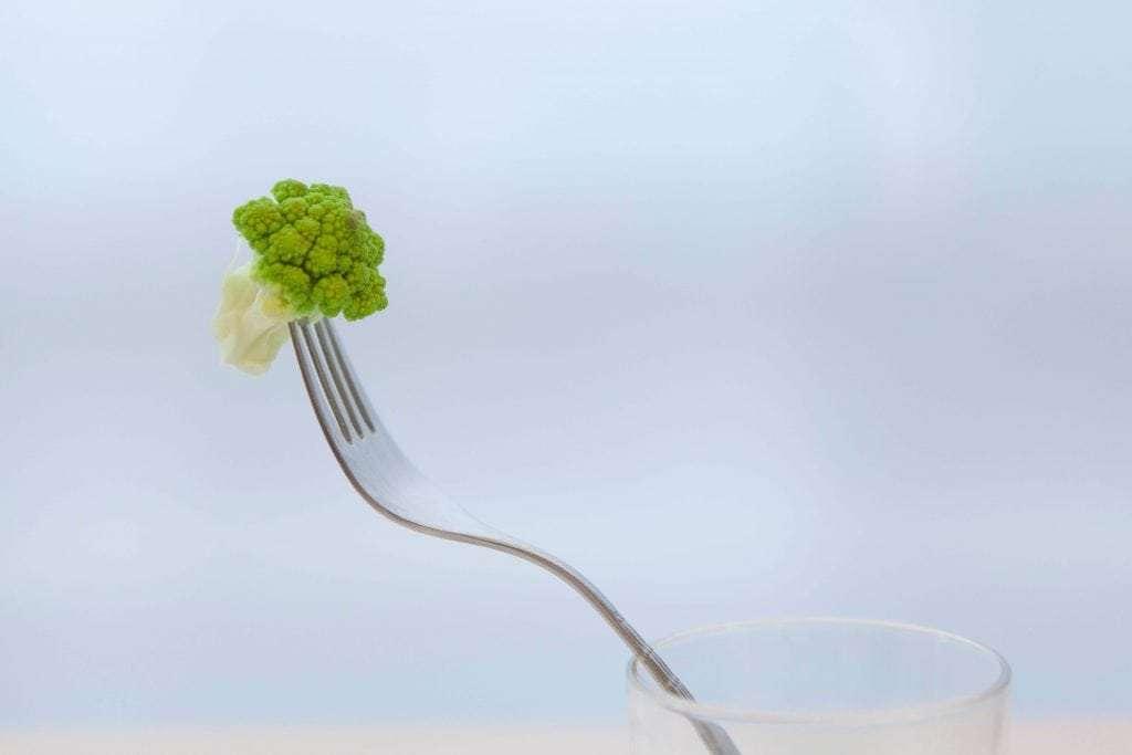alimentazione vegana e vegetariana